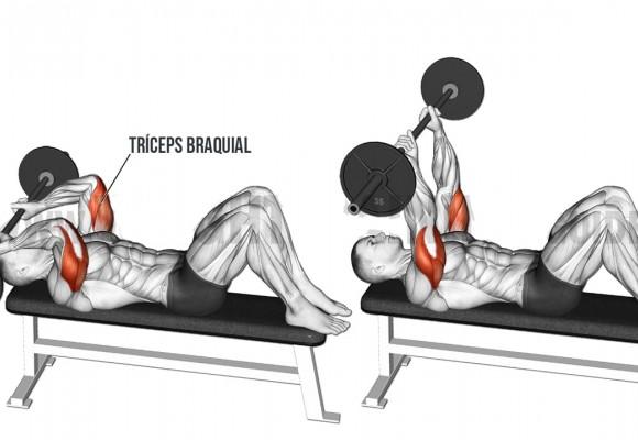 Press Francés para Tríceps. Que és y cómo ejecutarlo